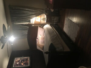 Snazzy 1BDRM Fully furnished suite Available Immediately