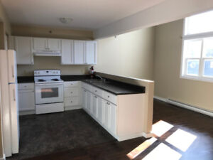 Spacious & Newly Renovated 4 Bedroom - North End Hfx
