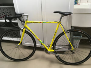 Pinarello Asolo Campagnolo Dura Ace equipped-54cm Mint Condition