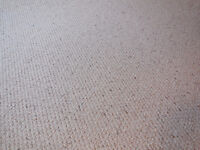 High quality Berber carpet - Beige - underpad included!