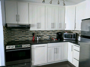 Recently renovated move-in ready 2BDR condo for sale (near downt