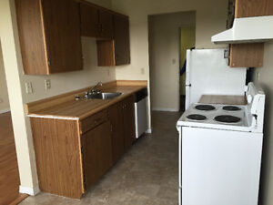 Millwoods 2 Bedroom Apartment-Dec & January Rent Free