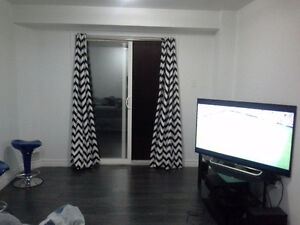 NEW FURNISHED BASEMENT CLOSE TO FOREST GLEN SHOPPING CENTRE. Kitchener / Waterloo Kitchener Area image 9