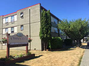 PORT ALBERNI APARTMENTS FOR RENT: 5 BUILDINGS TO CHOOSE FROM!!