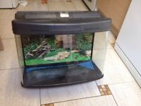 Fish Tank / Aquarium 64L With filter, heater and more