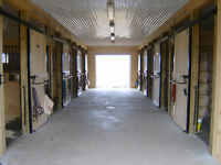 Horse boarding, quiet friendly barn