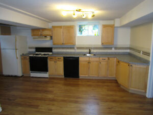 all inclusive 2 bed basement apartment for rent