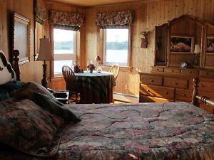 Year Round living on 1.6 acres on Gull Pond Deer Park St. John's Newfoundland image 5