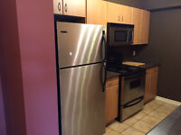 **Perfect for professional in Downtown/ mins from University***