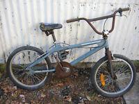 Fish Bone BMX Bicycle