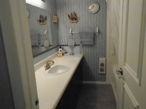 Unique Property for  Home & Work Cambridge Kitchener Area image 3