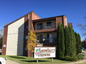 A beautiful two-bedroom condo unit for rent at Snowberry Downs!