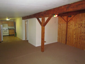 Burford 2nd level All Inclusive over1000sq with laundry (shared)