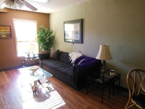 Fully furnished suite all utilities