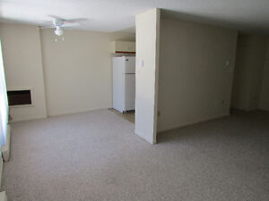BEAUTIFUL 2 BD. APT.AVAILABLE DEC. 1 INCL. 6 APPLIANCES Kitchener / Waterloo Kitchener Area image 2