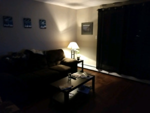 Looking for roommate in the beginning of November