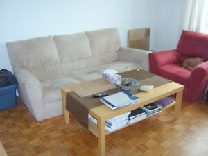 500ft2 - 1 bedroom apt for sub lease $750 (plateau mont royal)