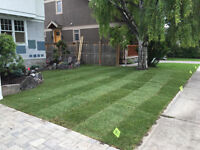 Sod Installation - Landscaping  - Free Quotations