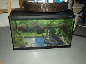 LightGLO 80x35 ... 34 gallon Fish Tank