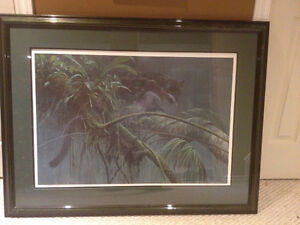 Robert Bateman, Shadow of the Rain forest print with letter of a