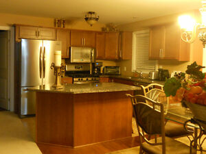 LOOKING FOR A PAINTER YOU CAN TRUST ? Windsor Region Ontario image 5