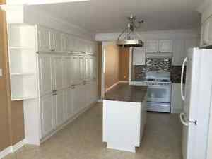 Orléans South 3 Bedrooms Apartment for rent $1600 heat included