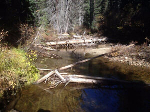 Placer Gold Claim - Britton Creek, near Tulameen, BC - T39