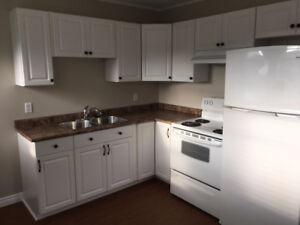 Beautiful newly renovated 2bed 1 bath for rent immediately