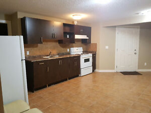 WALKOUT 1 bed 1 bath basement suite in laural south edmonton Edmonton Edmonton Area image 1