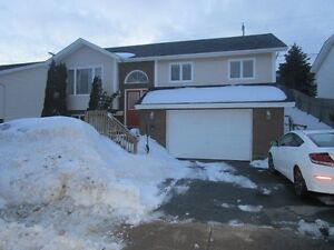 123 Carrick Dr - Spacious Family Home, Heat & Light Included