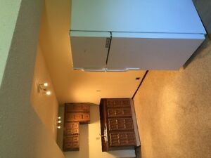 newly renovated 1000 SQF brightly basement suite in kensington