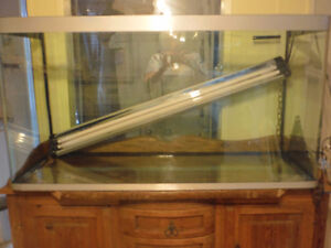 88+ US Gal tank, perfect condition. Edmonton Edmonton Area image 1