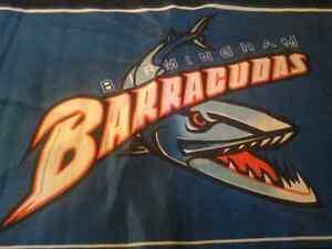 "Birmingham Barracudas 18""x11"" Flag Canadian Football League CFL London Ontario image 3"