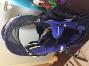 Kelty Kids expedition carrier