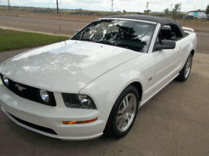 Very low 22 thousand klms 2006 GT  mustang Convertible automatic