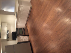 2 bedroom plus den basement apartment