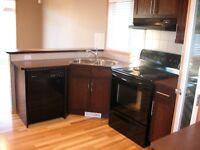 Royal Oak Estates NW - Luxury Home available immediately!