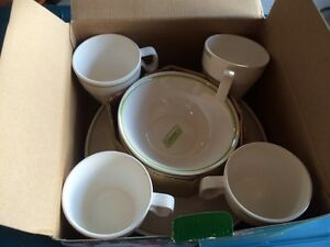 Coleman melamine dinnerware 12 piece set Kingston Kingston Area image 3