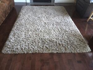 Rug - brand new condition