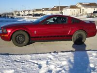 2006 Ford Mustang V6 4.0L 5Spd Pony Package