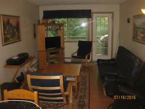 Sparwood/Fernie Two Bedroom Condo for Rent