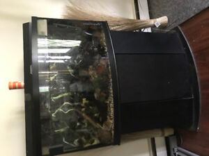 50gal bowfront everything incl