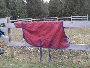 Assorted Horse Winter Turn Out blankets