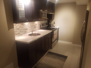 SPACIOUS ONE BEDROOM BASEMENT APARTMENT MILTON