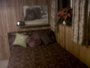 Basement Furnished Room for Rent all inclusive November 1st Peterborough Peterborough Area image 4