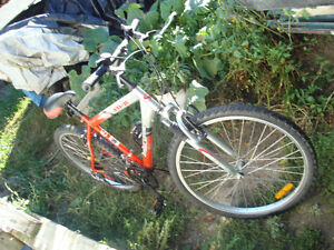 Supercycle XLI-21 Mountain Bike For Sale