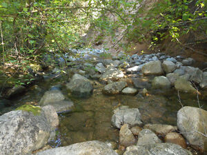 Placer gold claim on lockie creek (Tulameen)