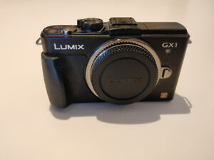 Panasonic Lumix GX1 with 14-42mm Lens