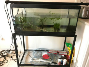40 gallon aquarium with stand , excellent condition for sale