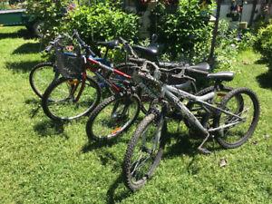Vélos plusieurs